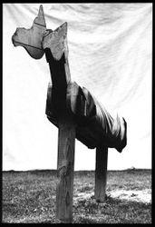 Steven Klein: Stag Film.