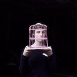 Cig Harvey: Birdcage, Sadie, Tenants Harbor, Maine, 2013