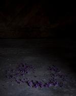 Cig Harvey: Ring of Lilacs, Camden, Maine , 2018