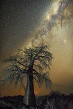 Cosmos Exhibition: Beth Moon – Aquila