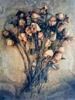 Diana Bloomfield: Spent Roses, 2018