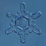Douglas Levere: Snowflake 2014.02.22.001B
