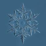 Douglas Levere: Snowflake 2015.02.02.001