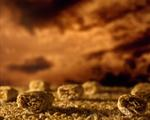 Ernie Button: Shredded Wheat Bales, 2004