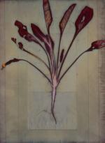 James Hajicek & Carol Panaro-Smith: Earth Vegetation Composite 05-05