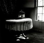 Jon Edwards: Empty Cage, 2005