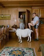 Jon Naiman: Familiar Territory, #86, 2007