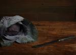 Justine Reyes: Still Life with Cabbage and Knife