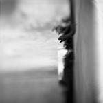Keith Carter: Rainspout