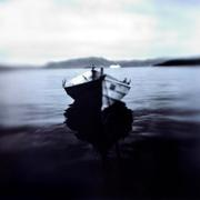 Keith Carter: More New Work 2005
