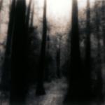 "Ken Rosenthal: A Dream Half Remembered"" # TIF-54-11/12"