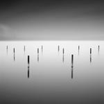 Michael Levin: Quiet Harbour, 2007