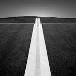 Michael Levin: Aqueduct, 2009