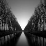Michael Levin: Damme (Napoleon's) Canal, 2009