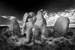 Mitch Dobrowner: Rock Family