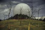 Nathan Benn: Spaceship Earth, 1981