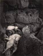 Pentti Sammallahti: St Govan's Head, Wales, 1995