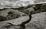 Peter Merts: Crumpled Culvert Pipe, 2004