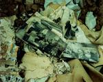 Steve Fitch: The floor of a house in Corona, eastern New Mexico, October 18, 1993