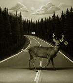 Steve Fitch: Diorama, Highway I-75, Gaylord, Michigan, 1973?