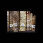 Susannah Hays: Sacra Theologie