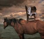 Tom Chambers: Deliverance