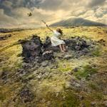 Tom Chambers: Last Bough